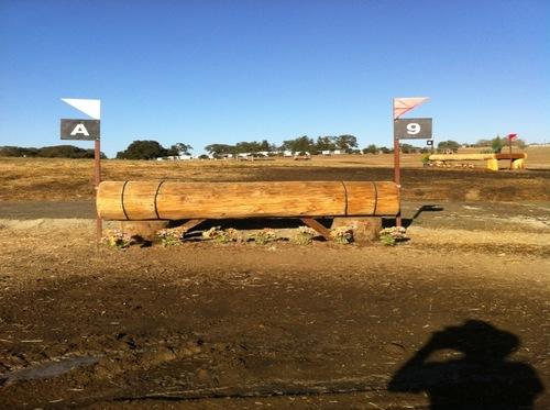 Fence 9 - Skinny log