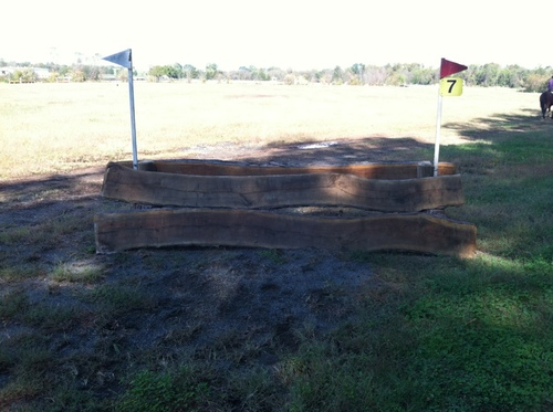 Fence 7 - Walnut Oxer