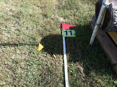 Fence 11 - Brush Log