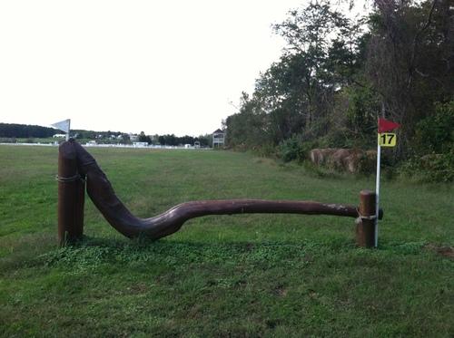Fence 17 - Crooked Log