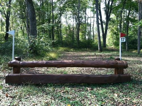 """Fence 17 - Rail """"Inn"""" the Woods"""