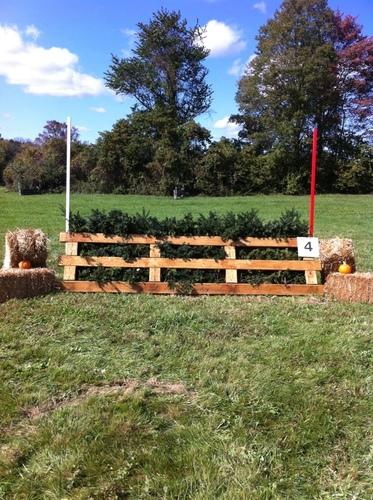 Fence 4 - Brush Box