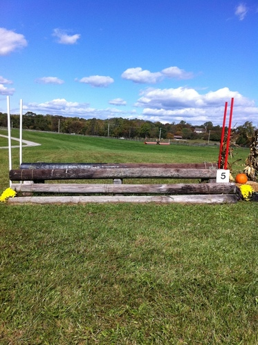 Fence 5 - Oxer