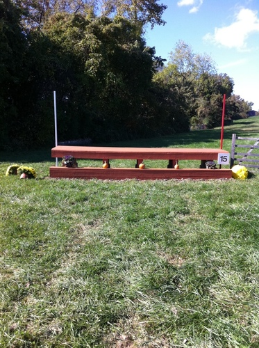 Fence 15 - Picnic Table