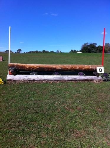Fence 16B - Hogsback