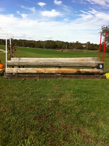 Fence 9 - Oxer