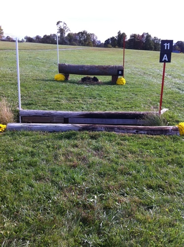 Fence 11A - Ditch