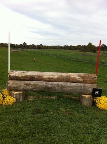 Fence 17B - Logs