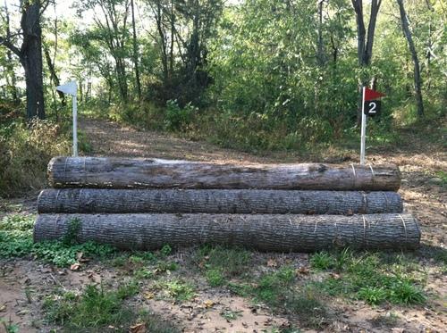 Fence 2 - Triple Logs