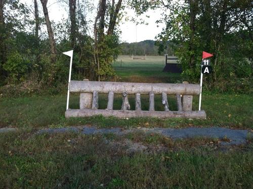 Fence 11A - Tiger Trap