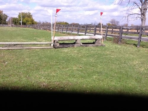 Fence 14 - T Pole coop