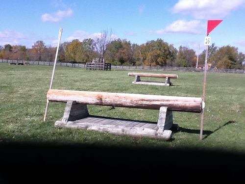 Fence 16 - Tpole coop