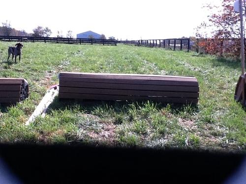 Fence 4 - Dan's Rolltop