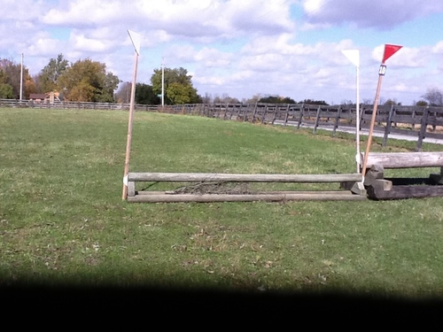 Fence 10 - T pole coop