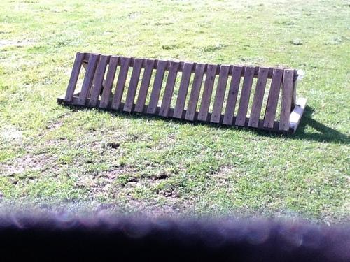 Fence 12 - Tiger trap