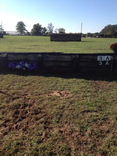 Fence 3A -