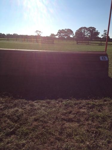 Fence 3B -