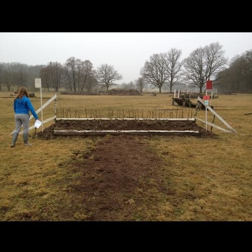 Fence 6 - Häck