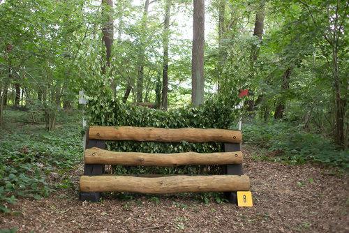 Fence 7 - Schmale Hecke