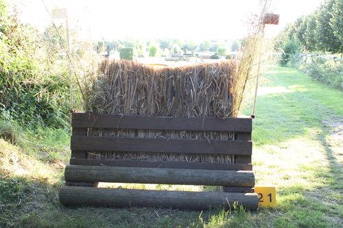 Fence 21 - Im Hexenwald