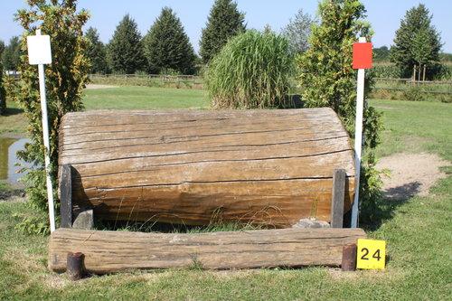 Fence 24 - Baumstamm vorm Wasser