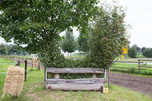 Fence 25 - Hecke unterm Baum