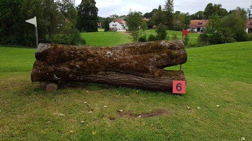 Obstacle 6 - Sattelprofis Sattelbock