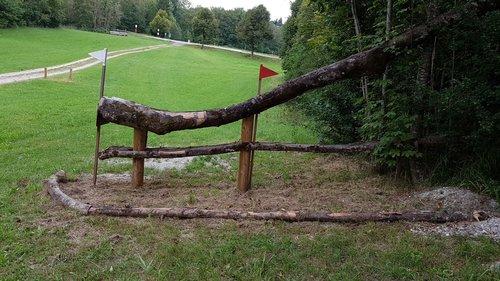 Obstacle 9B - Alphorn
