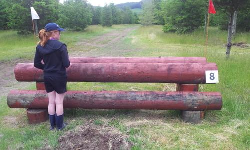 Fence 8 -