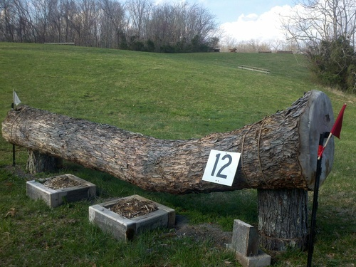 Fence 12 - Crooked Log