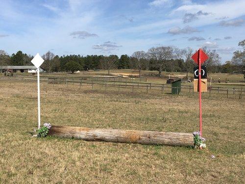 Fence 6B - Log Jump