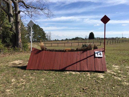 Fence 14 - Steeplechase