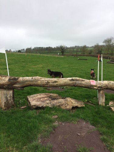 Obstacle 11C -