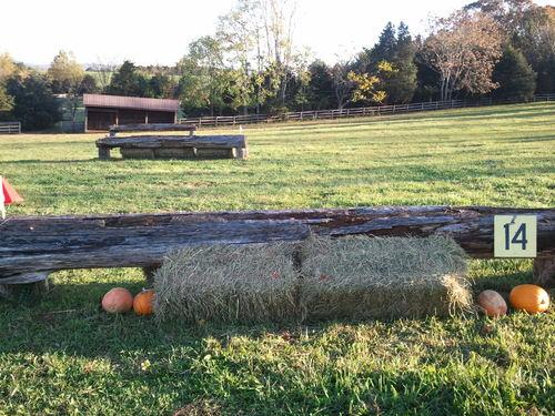 Fence 14 - Log