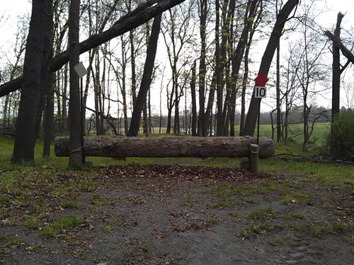 Obstacle 10 - Deep Woods Detour