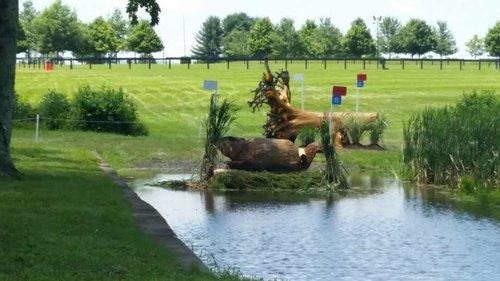 Hindernis 18B - Adequan Beaver Pond - B