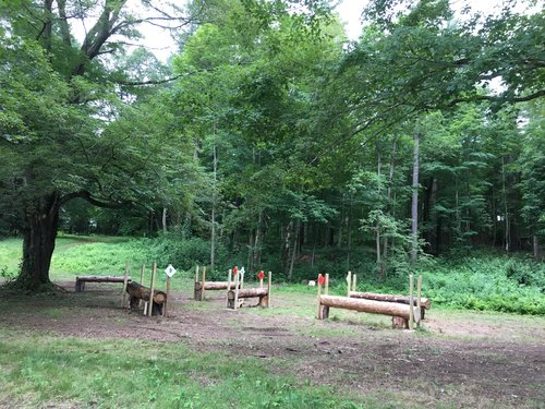 Obstacle 5 - Prince of Wales Logs