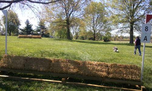 Fence 8AE -