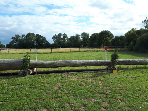 Fence 9 - Baum über Graben