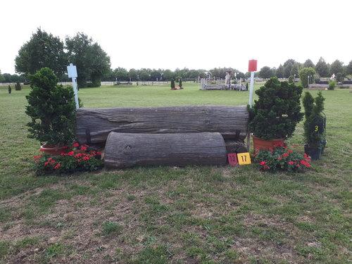 Fence 17 - Dicker Baum