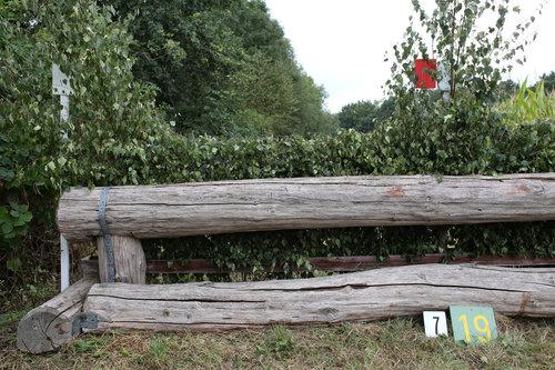 Fence 7 - Eichenhecke
