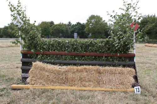Fence 13 - Hecke