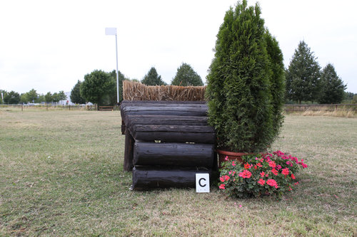 Fence 16C - Mastentrapez