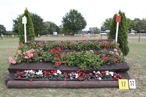 Fence 17 - Blumensprung