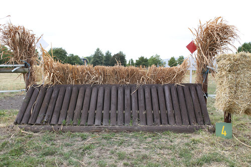 Fence 4 - Palisade mit Hecke