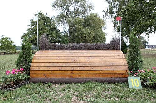 Fence 10 - Halbes Schwein
