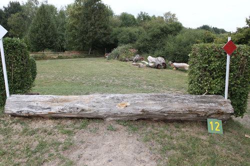 Fence 12 - Bergab