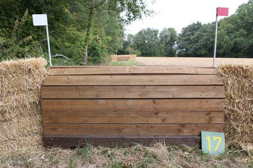 Fence 17 - Schweinerücken