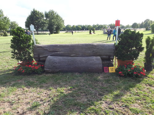 Obstacle 13 - Dicker Baum