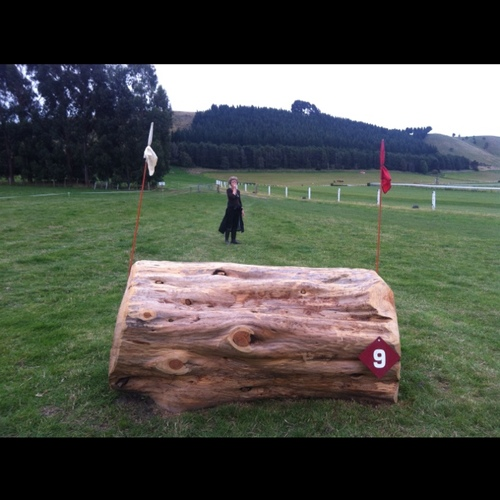 Obstacle 9 -
